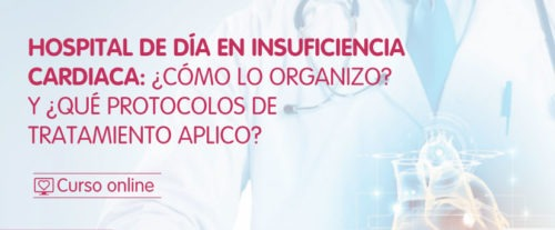 Hospital de día en Insuficiencia Cardíaca: ¿Cómo lo organizo? Y ¿Qué protocolos de tratamiento aplico?