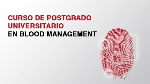 Logo curso Blood management