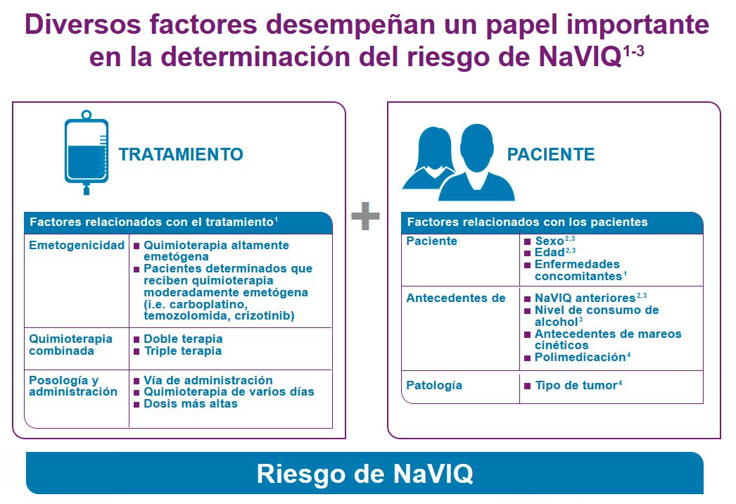 Cuadro factores con relevancia en la determinación de NaVIQ