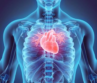 Cáncer y enfermedad cardiovascular: así se relacionan